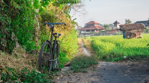 Labourer's bicycle